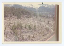 Aerial View of Clear-cutting