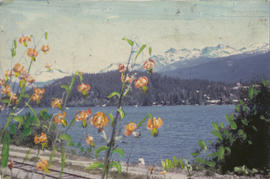 Hand painted View of Alta Lake