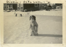 Binkie at Alta Lake 1941